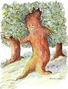 Árvores que andam